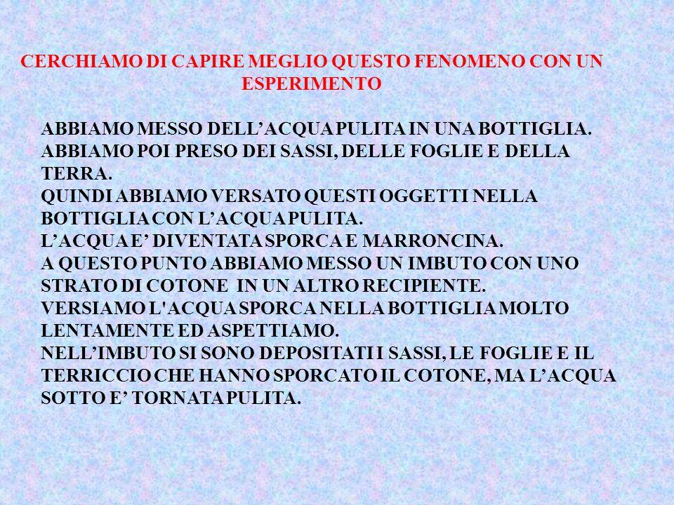 CERCHIAMO DI CAPIRE MEGLIO QUESTO FENOMENO CON UN ESPERIMENTO