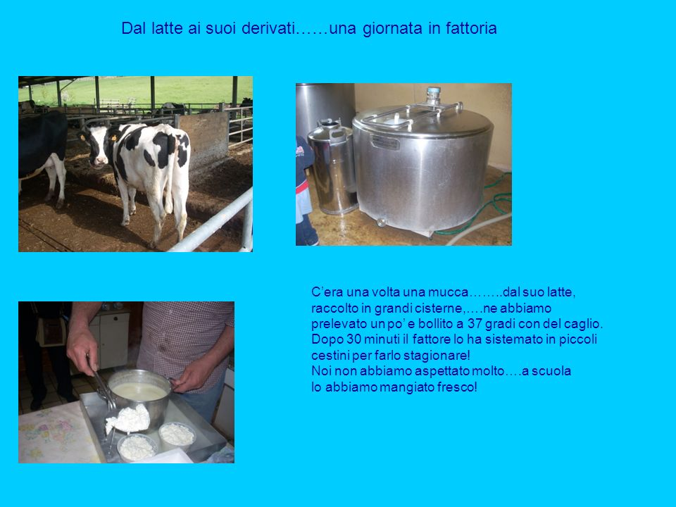 Dal latte ai suoi derivati……una giornata in fattoria