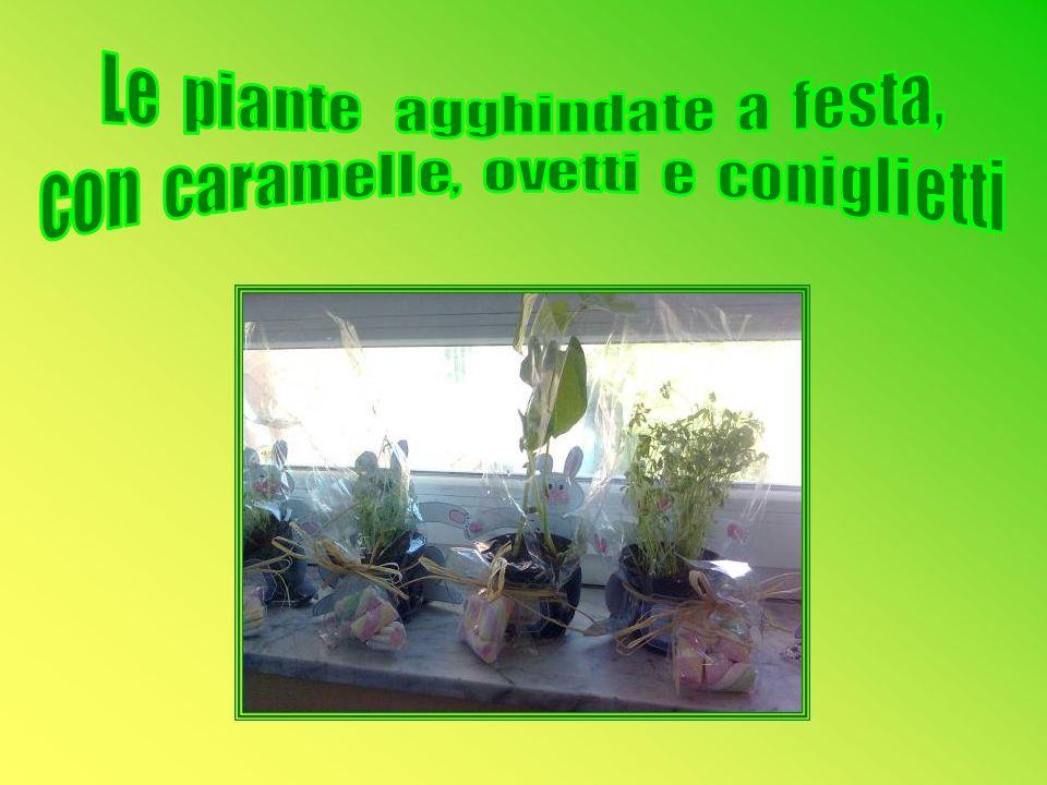 Le piante agghindate a festa, con caramelle, ovetti e coniglietti