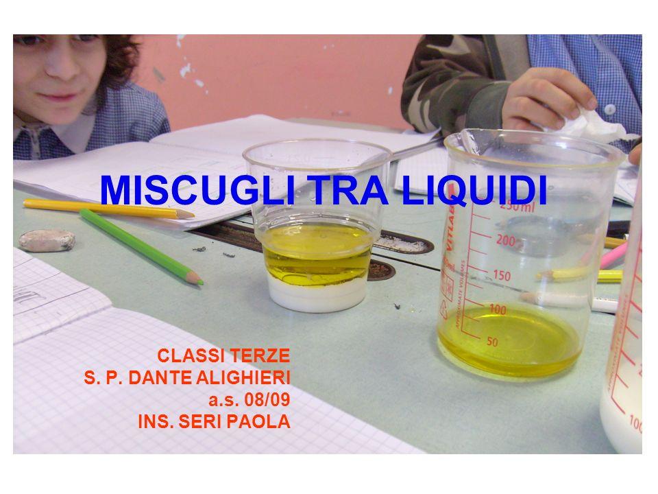 CLASSI TERZE S. P. DANTE ALIGHIERI a.s. 08/09 INS. SERI PAOLA
