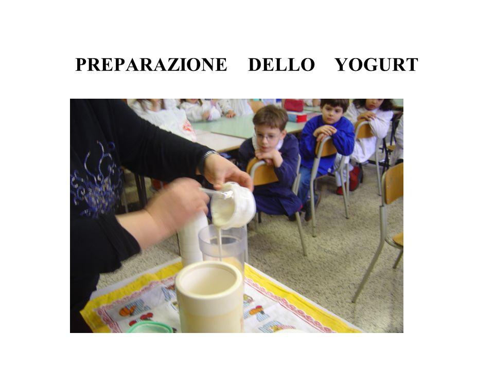 PREPARAZIONE DELLO YOGURT