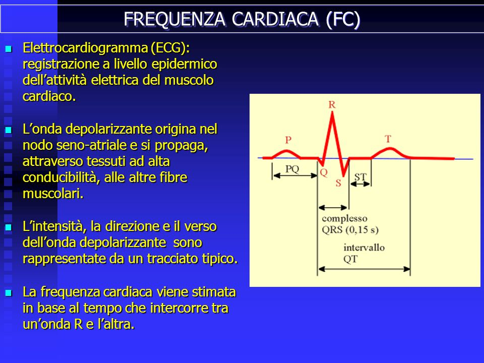 FREQUENZA CARDIACA (FC)