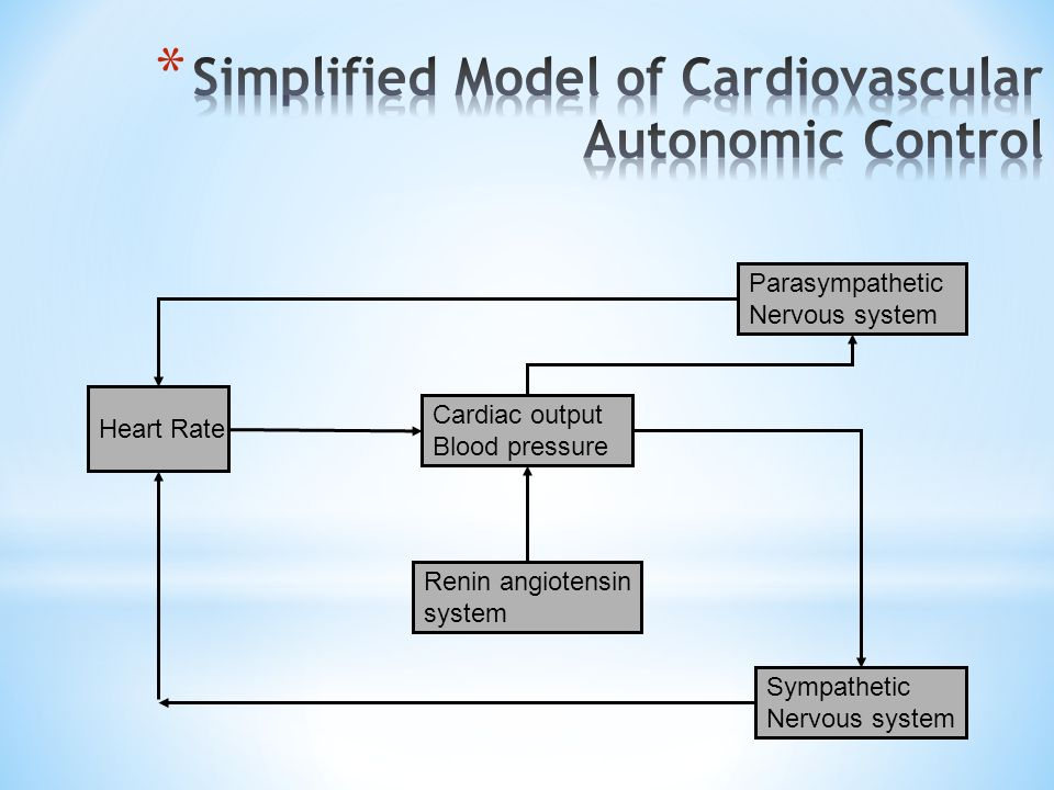 Simplified Model of Cardiovascular Autonomic Control