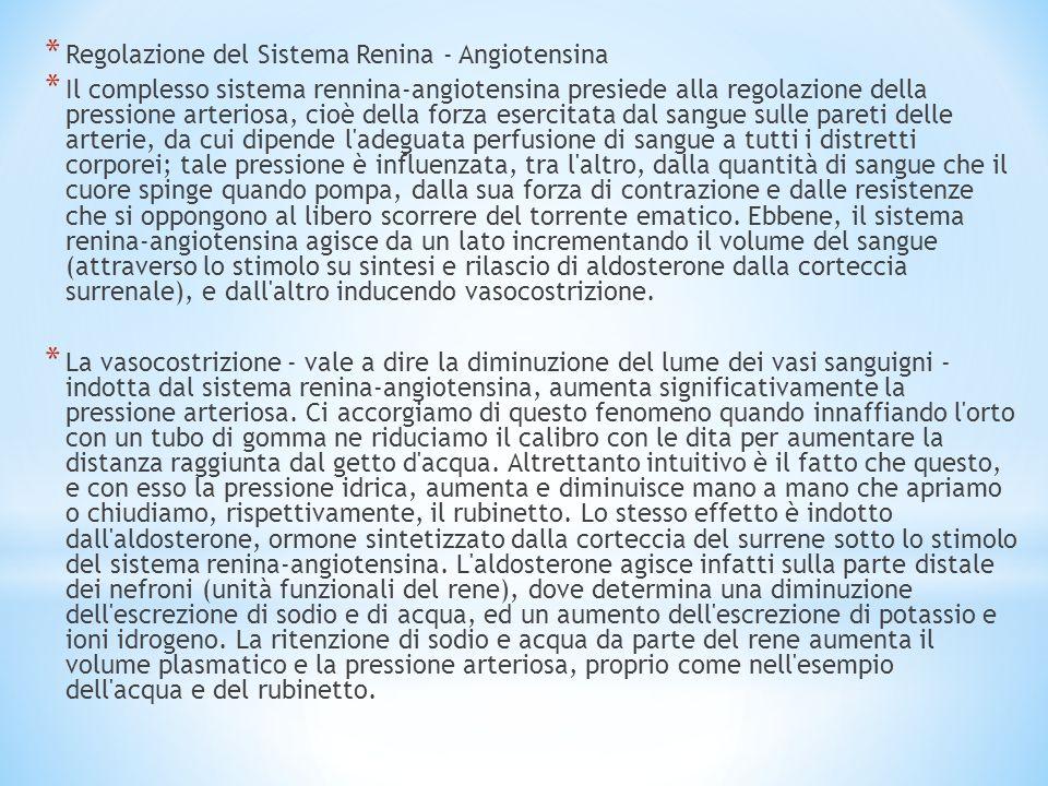 Regolazione del Sistema Renina - Angiotensina
