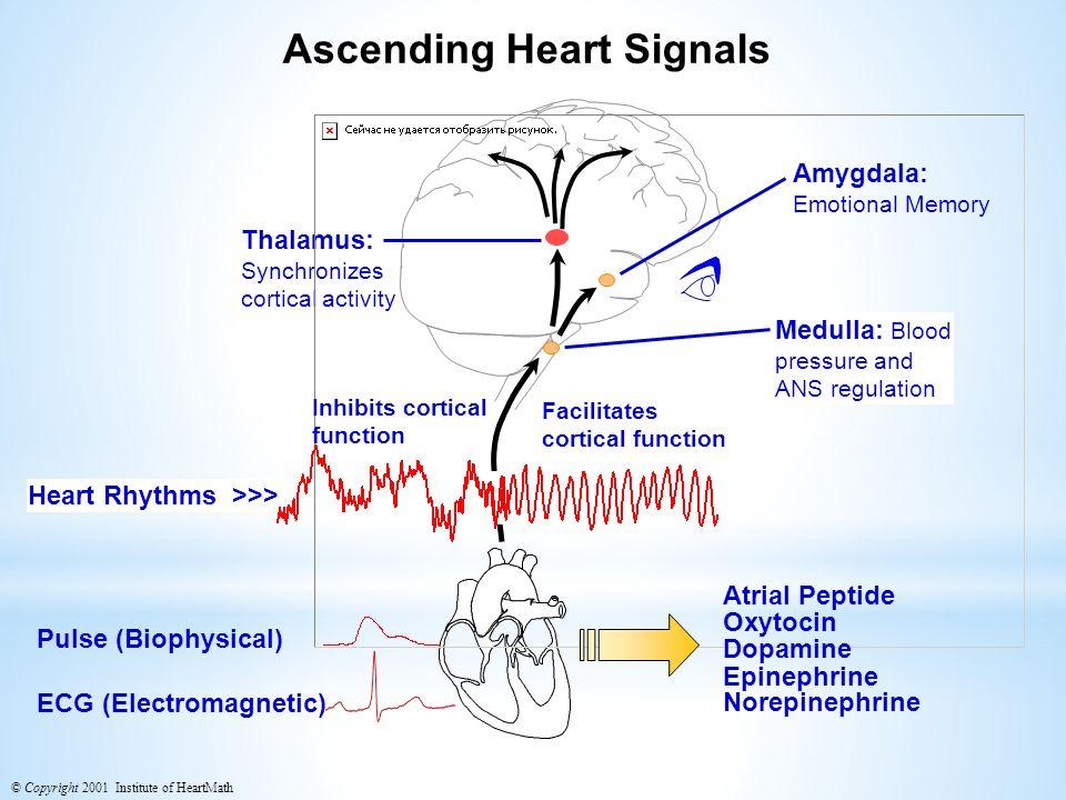 Ascending Heart Signals