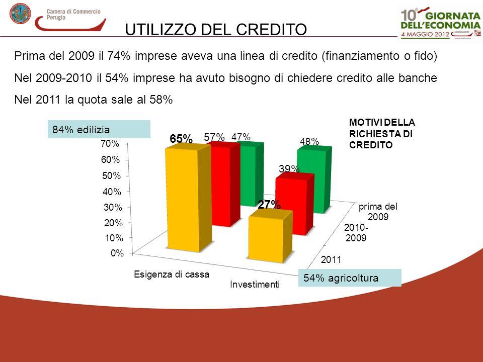 UTILIZZO DEL CREDITOPrima del 2009 il 74% imprese aveva una linea di credito (finanziamento o fido)
