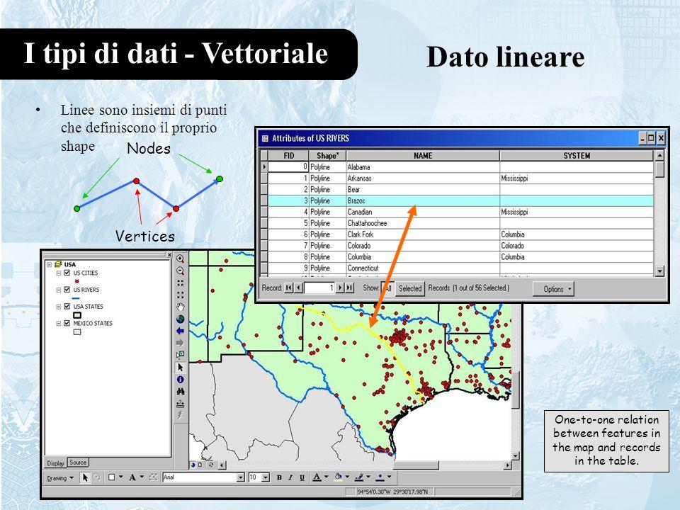 I tipi di dati - Vettoriale Dato lineare