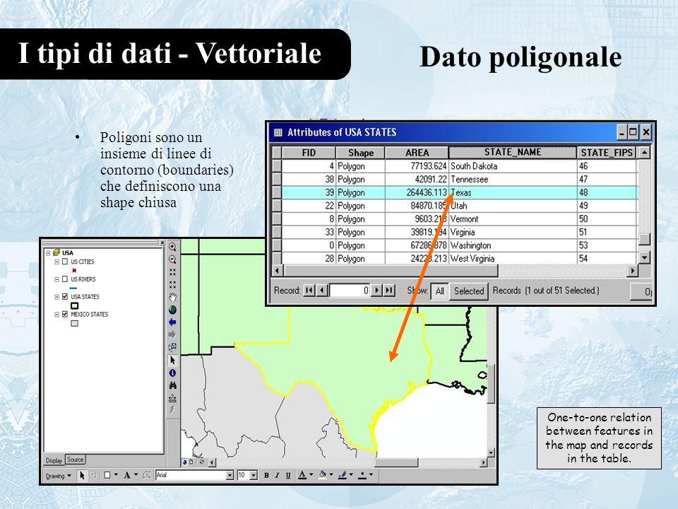 I tipi di dati - Vettoriale Dato poligonale