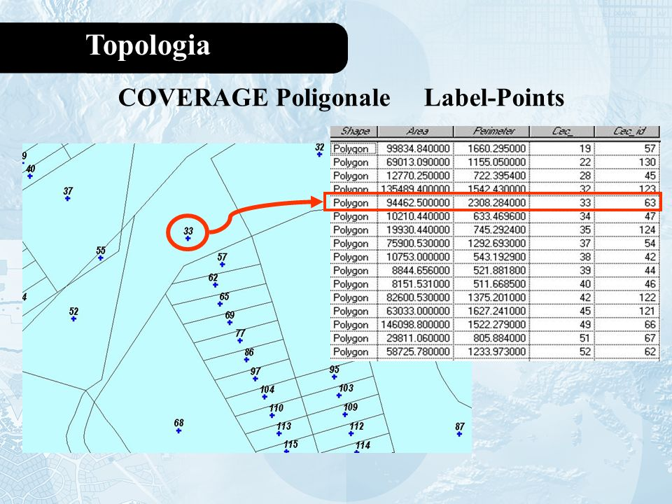 COVERAGE Poligonale Label-Points