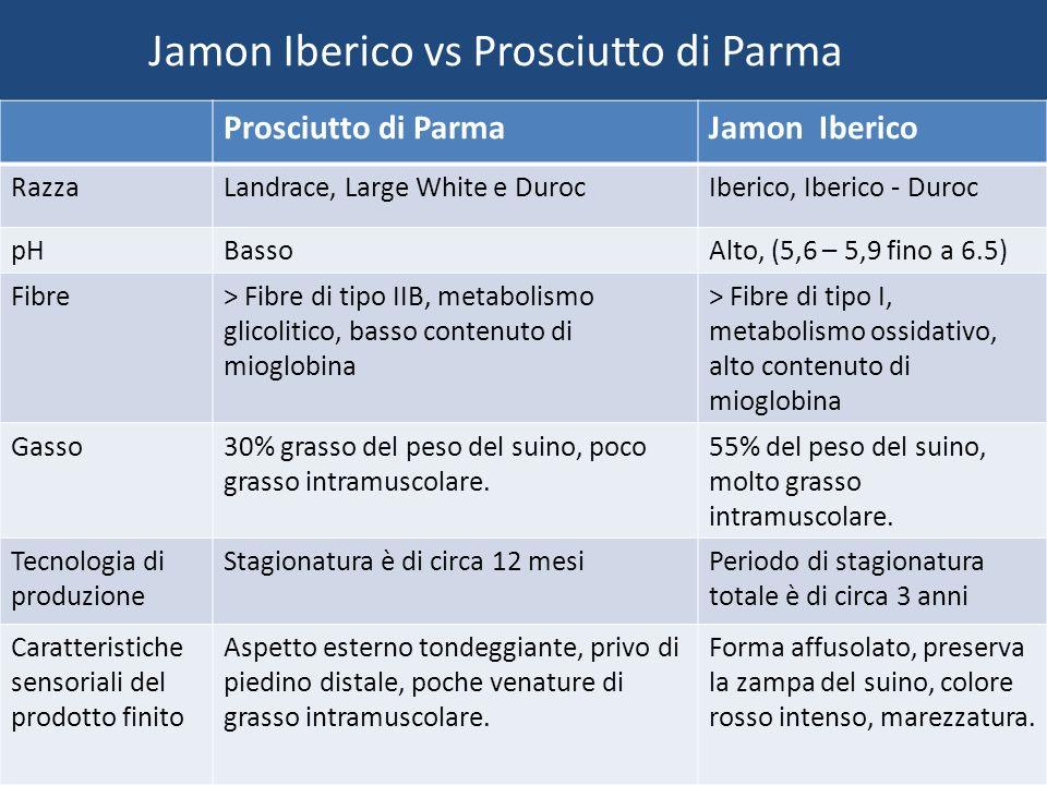 Jamon Iberico vs Prosciutto di Parma