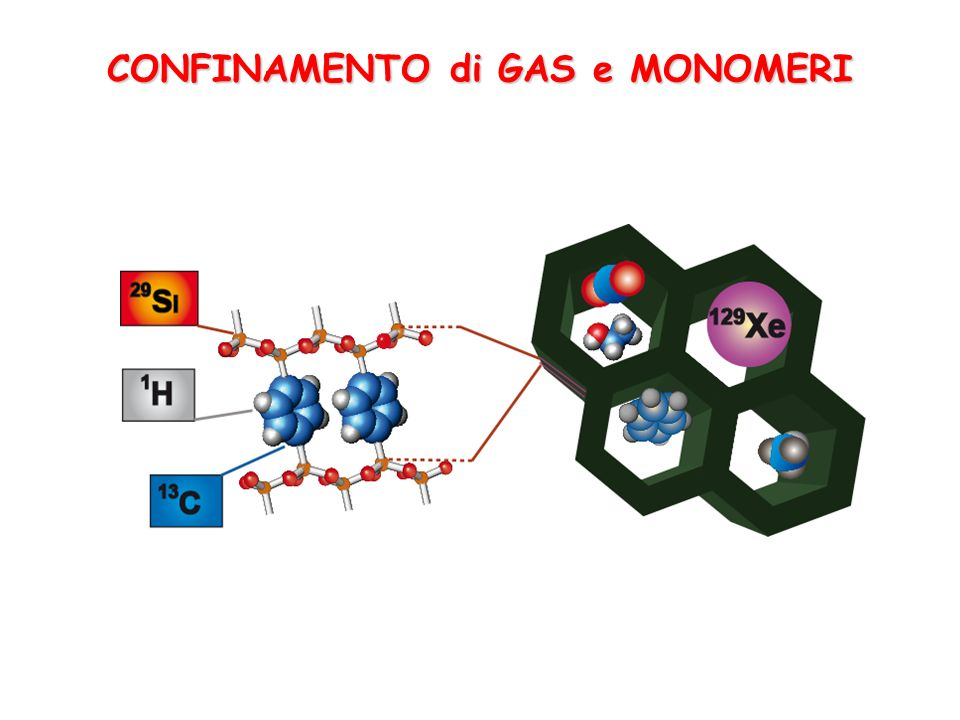 CONFINAMENTO di GAS e MONOMERI