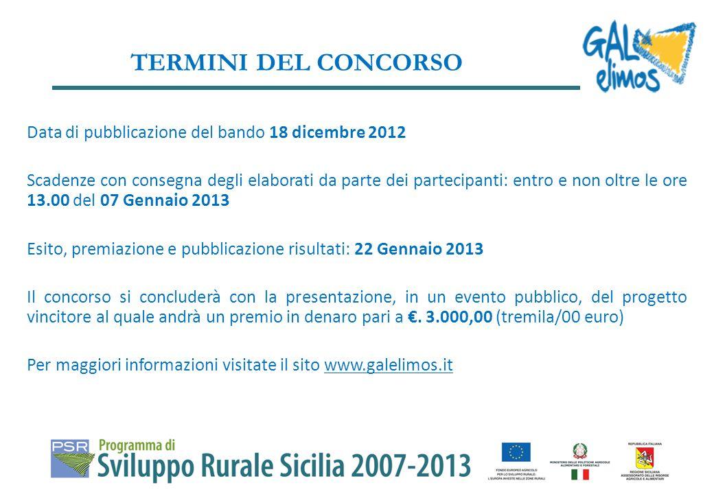 TERMINI DEL CONCORSO Data di pubblicazione del bando 18 dicembre 2012