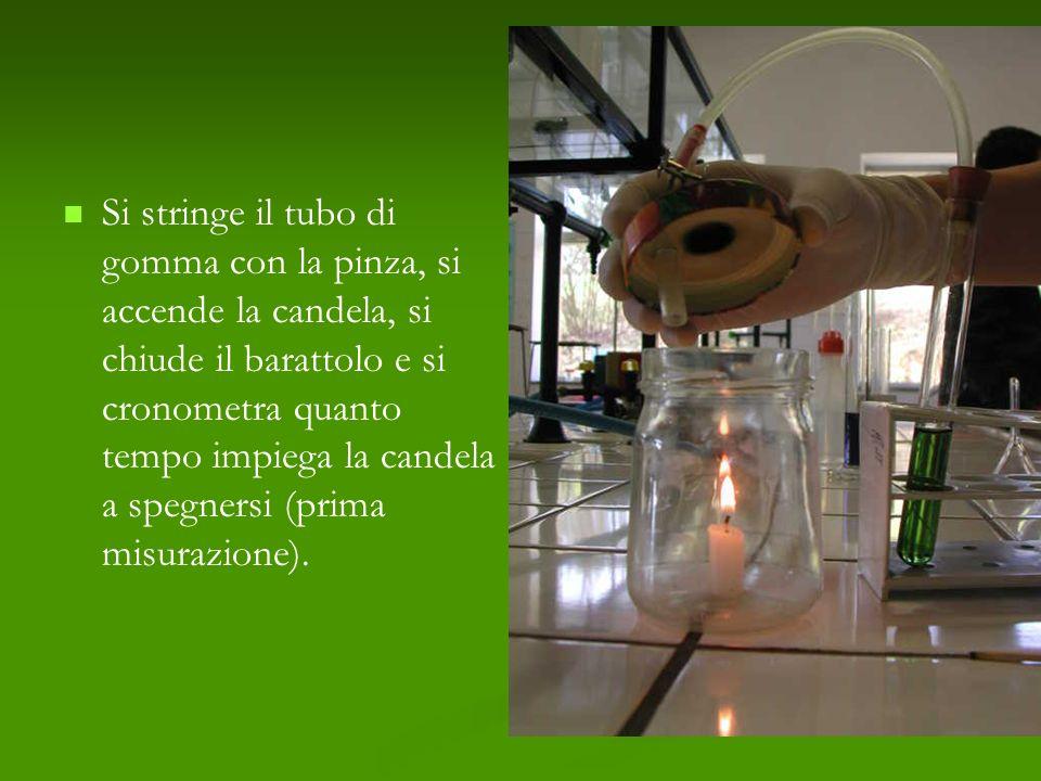 Si stringe il tubo di gomma con la pinza, si accende la candela, si chiude il barattolo e si cronometra quanto tempo impiega la candela a spegnersi (prima misurazione).
