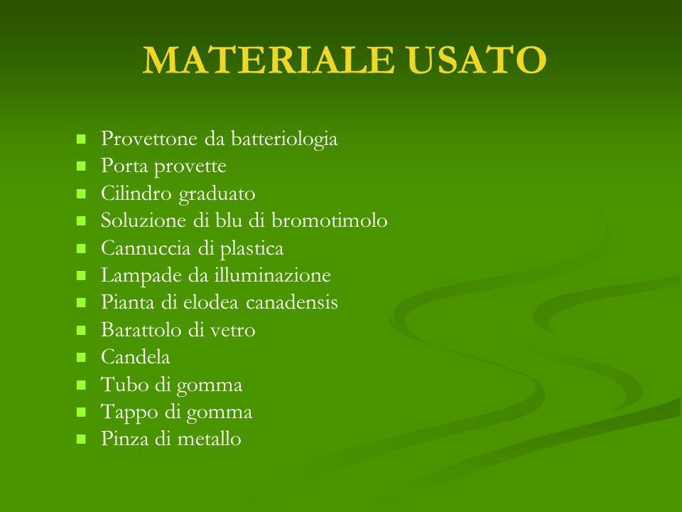 MATERIALE USATO Provettone da batteriologia Porta provette
