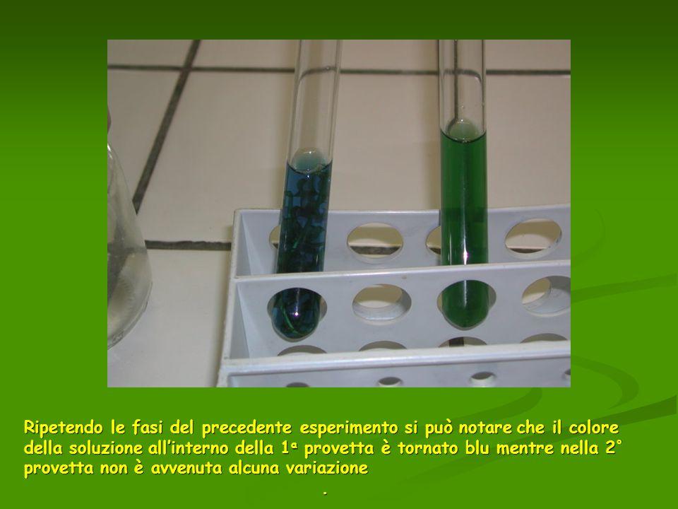 Ripetendo le fasi del precedente esperimento si può notare che il colore della soluzione all'interno della 1a provetta è tornato blu mentre nella 2° provetta non è avvenuta alcuna variazione