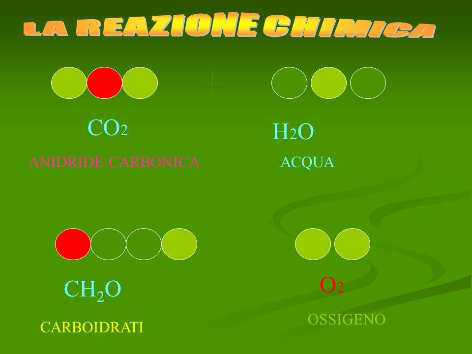 LA REAZIONE CHIMICA CO2 H2O O2 CH2O ANIDRIDE CARBONICA ACQUA OSSIGENO