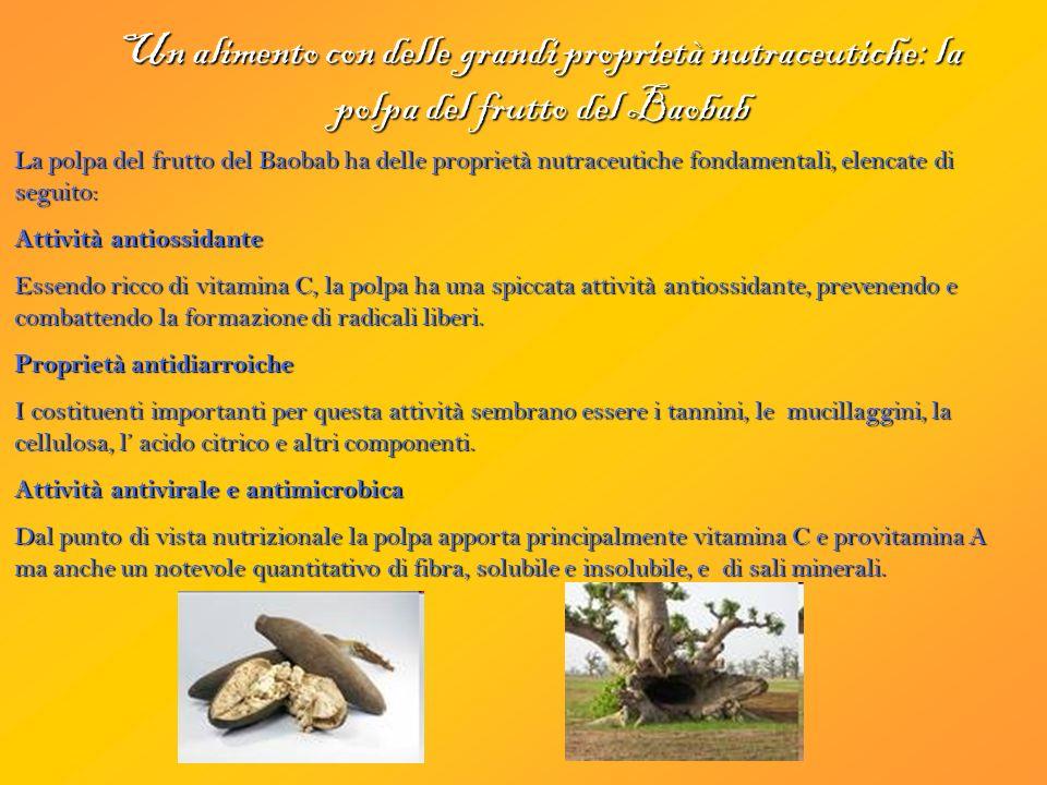 Un alimento con delle grandi proprietà nutraceutiche: la polpa del frutto del Baobab