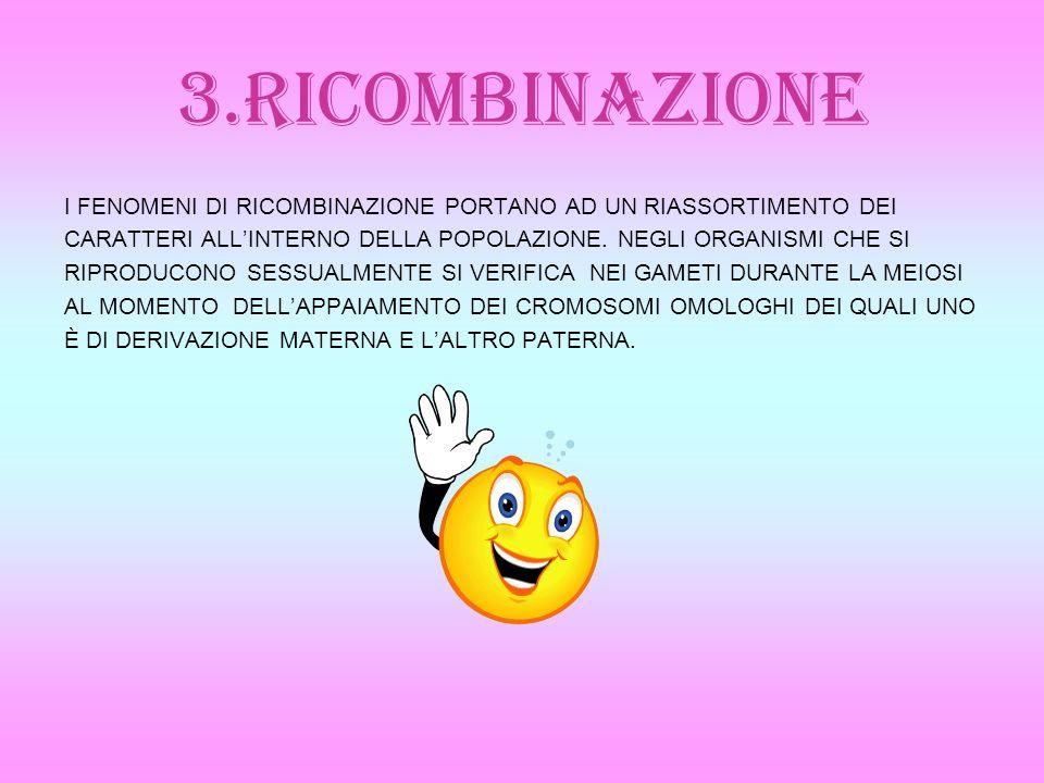 3.RICOMBINAZIONE I FENOMENI DI RICOMBINAZIONE PORTANO AD UN RIASSORTIMENTO DEI. CARATTERI ALL'INTERNO DELLA POPOLAZIONE. NEGLI ORGANISMI CHE SI.
