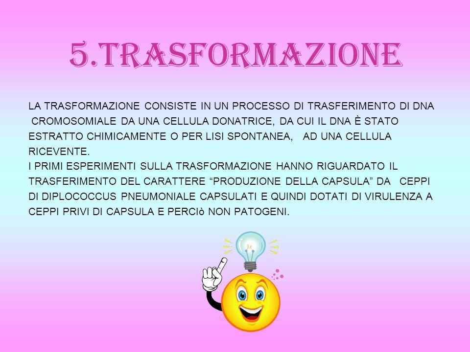 5.TRASFORMAZIONE LA TRASFORMAZIONE CONSISTE IN UN PROCESSO DI TRASFERIMENTO DI DNA. CROMOSOMIALE DA UNA CELLULA DONATRICE, DA CUI IL DNA È STATO.