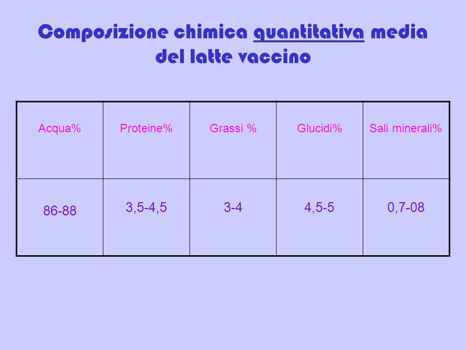 Composizione chimica quantitativa media del latte vaccino