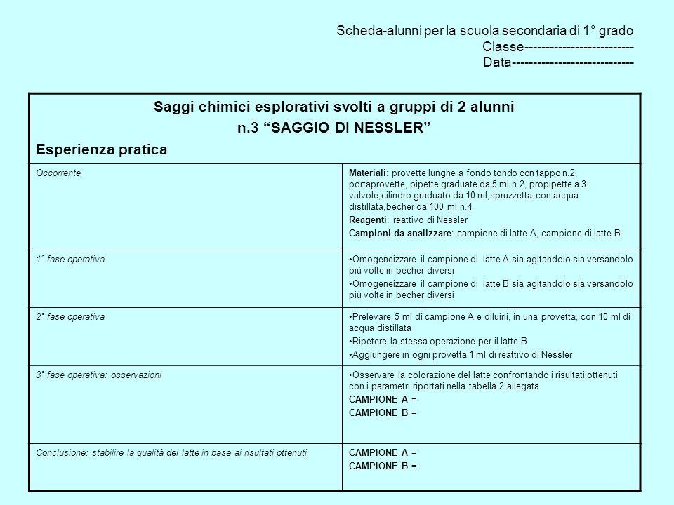 Saggi chimici esplorativi svolti a gruppi di 2 alunni