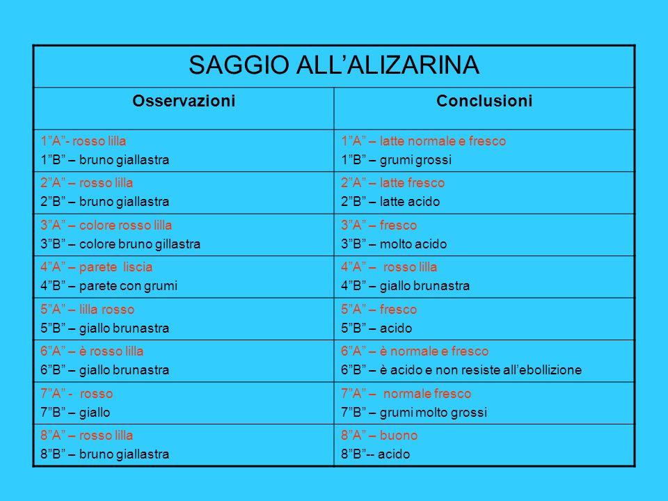 SAGGIO ALL'ALIZARINA Osservazioni Conclusioni 1 A - rosso lilla