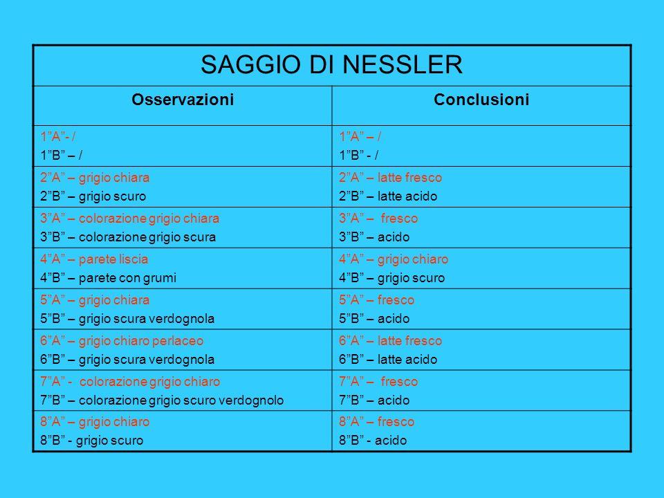 SAGGIO DI NESSLER Osservazioni Conclusioni 1 A - / 1 B – / 1 A – /