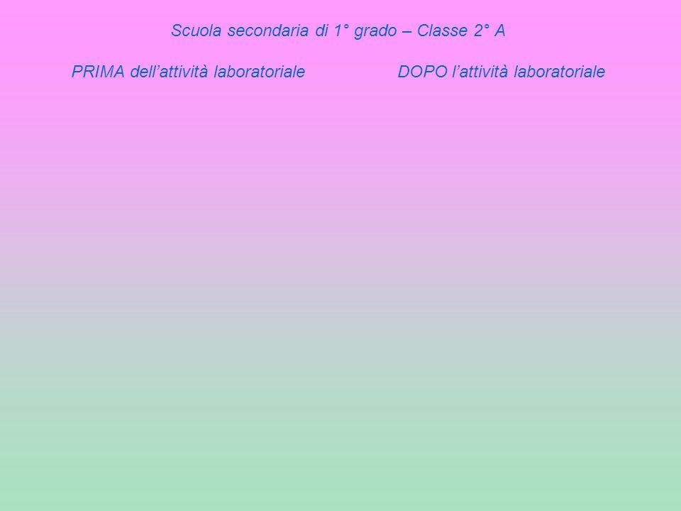 Scuola secondaria di 1° grado – Classe 2° A PRIMA dell'attività laboratoriale DOPO l'attività laboratoriale