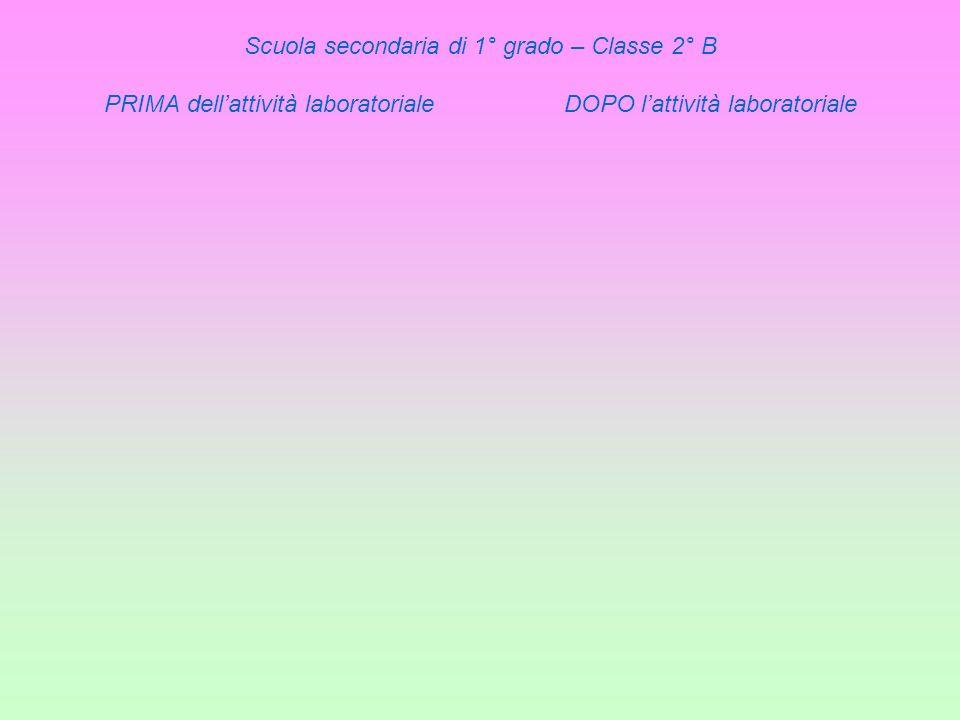 Scuola secondaria di 1° grado – Classe 2° B PRIMA dell'attività laboratoriale DOPO l'attività laboratoriale