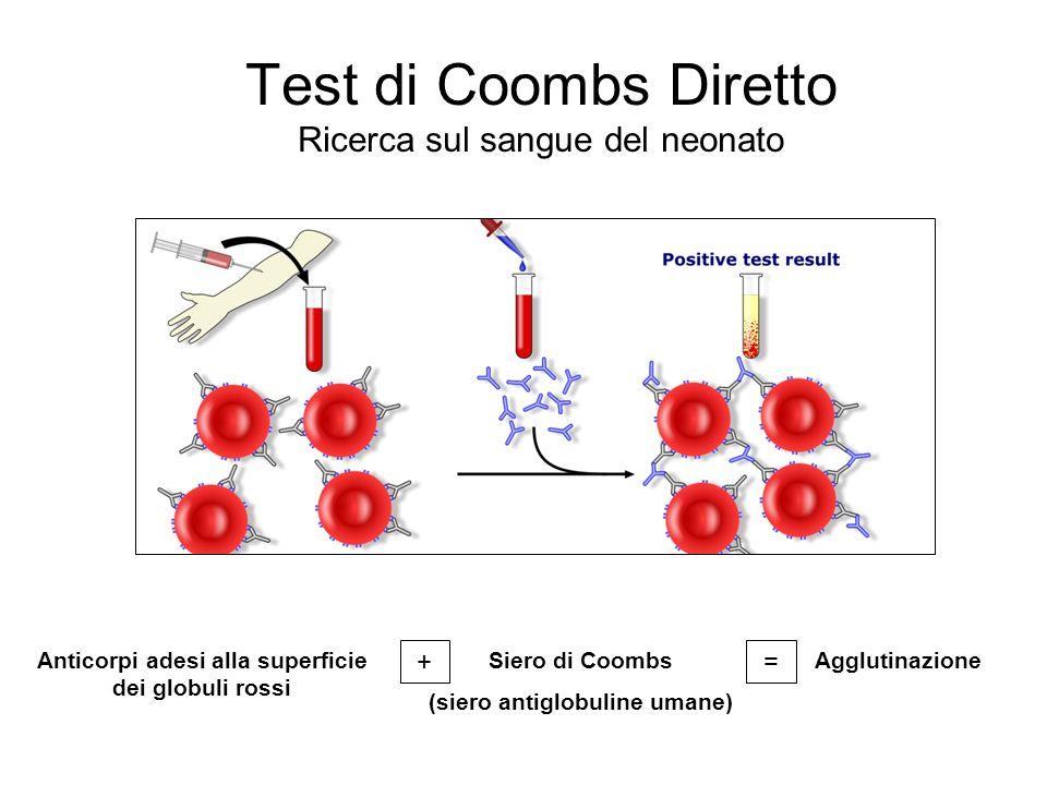 Test di Coombs Diretto Ricerca sul sangue del neonato