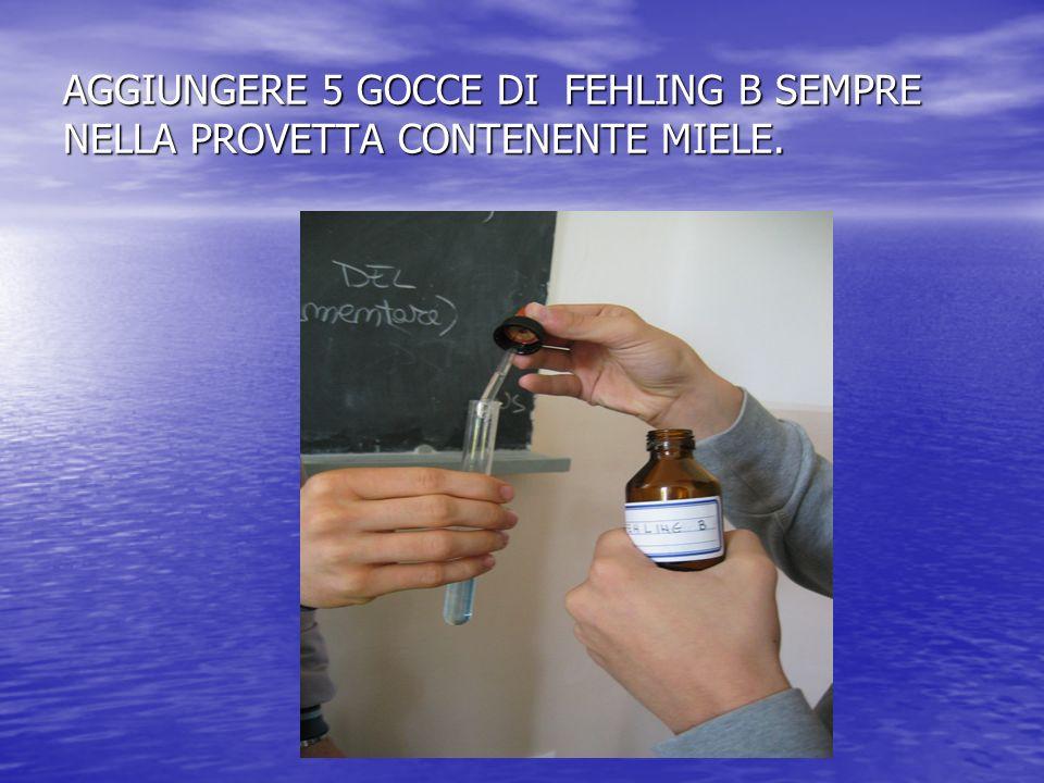 AGGIUNGERE 5 GOCCE DI FEHLING B SEMPRE NELLA PROVETTA CONTENENTE MIELE.