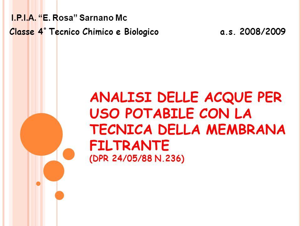Classe 4° Tecnico Chimico e Biologico a.s. 2008/2009