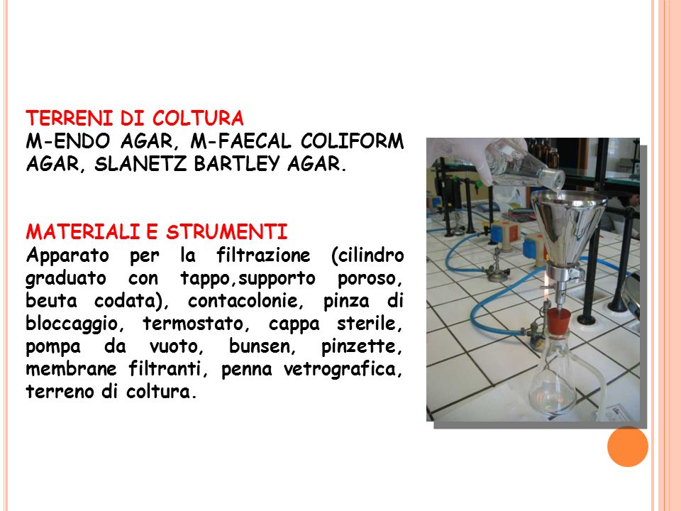 TERRENI DI COLTURA M-ENDO AGAR, M-FAECAL COLIFORM AGAR, SLANETZ BARTLEY AGAR. MATERIALI E STRUMENTI.