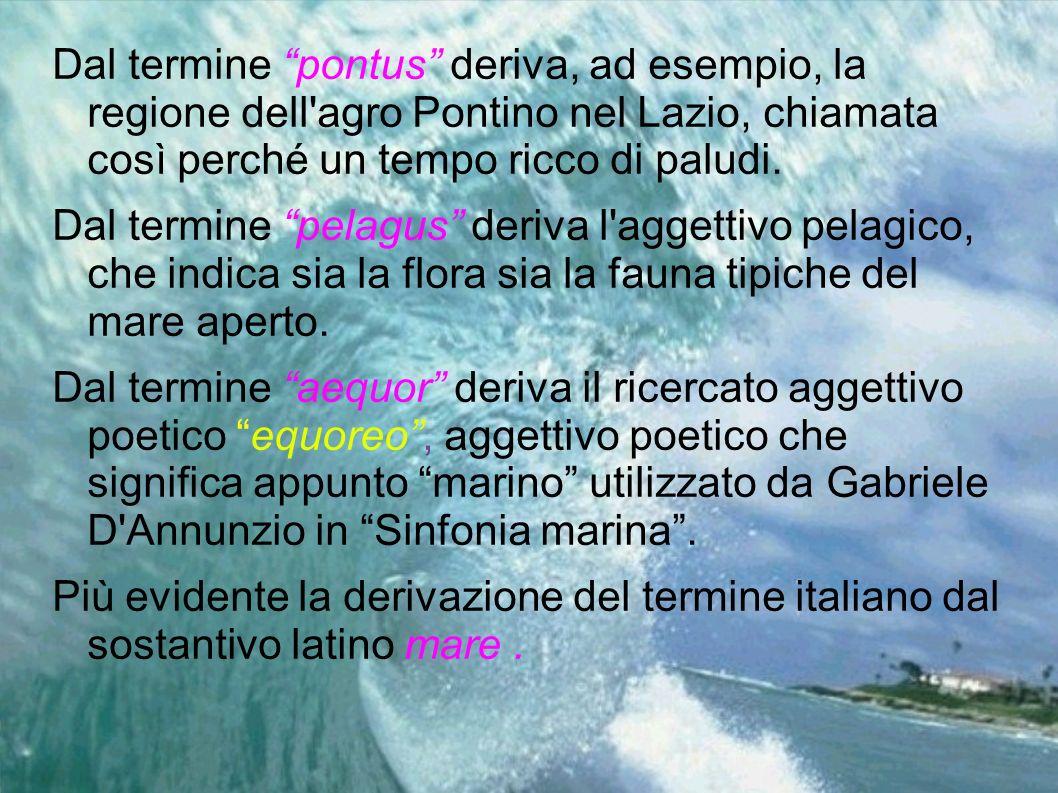Dal termine pontus deriva, ad esempio, la regione dell agro Pontino nel Lazio, chiamata così perché un tempo ricco di paludi.