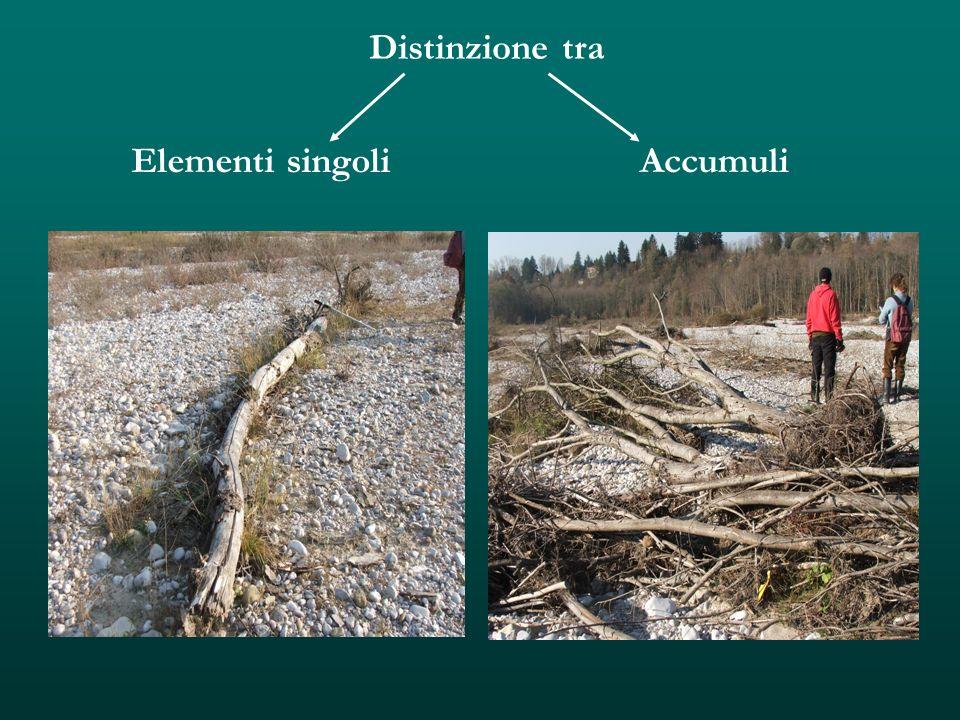 Distinzione tra Elementi singoli Accumuli