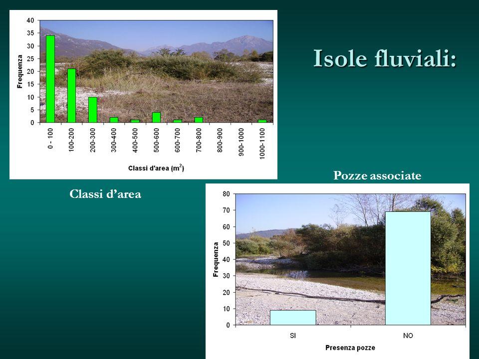 Isole fluviali: Pozze associate Classi d'area