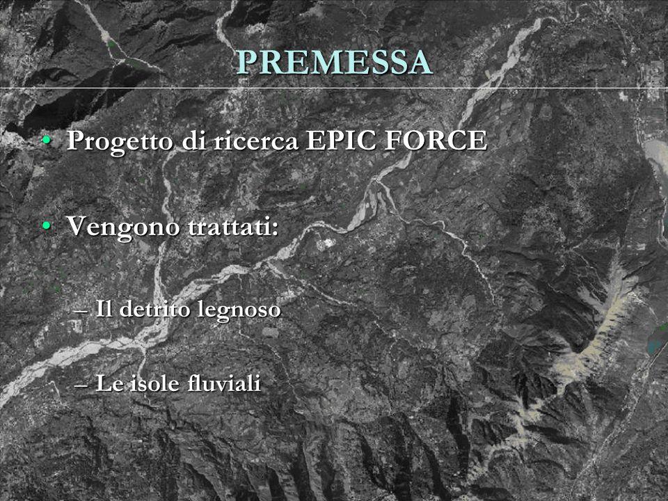 PREMESSA Progetto di ricerca EPIC FORCE Vengono trattati: