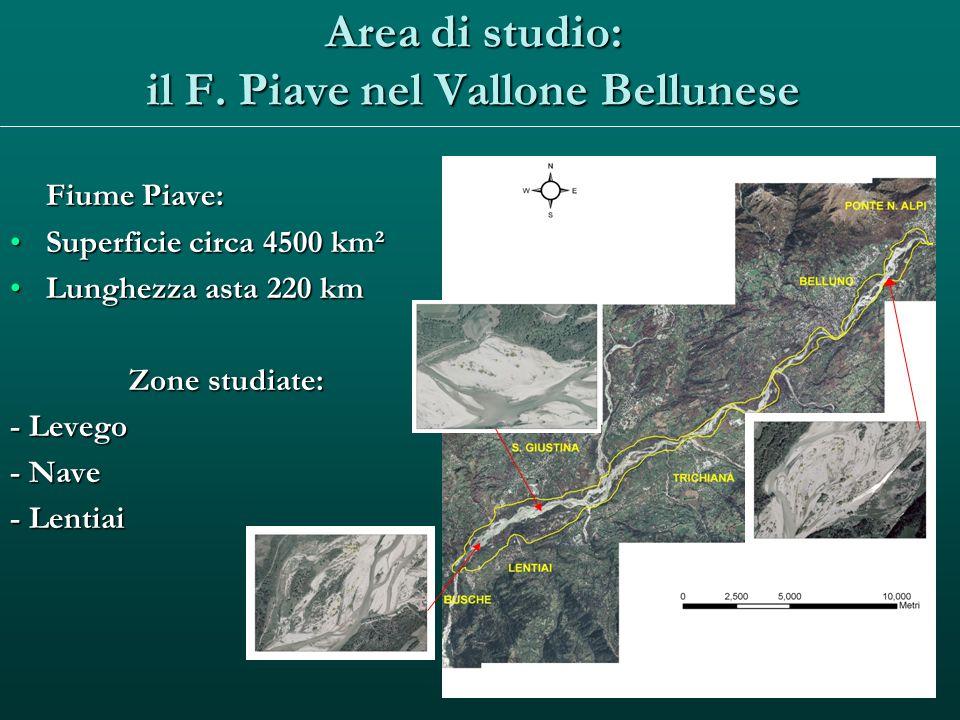 Area di studio: il F. Piave nel Vallone Bellunese