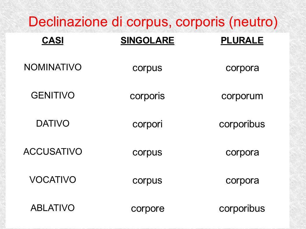 Declinazione di corpus, corporis (neutro)