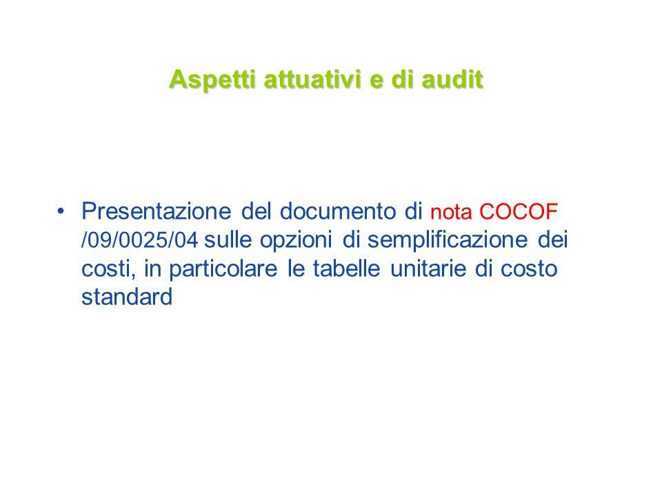 Aspetti attuativi e di audit