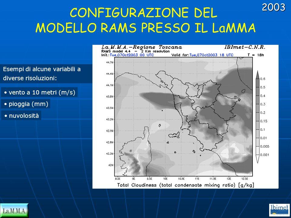 CONFIGURAZIONE DEL MODELLO RAMS PRESSO IL LaMMA