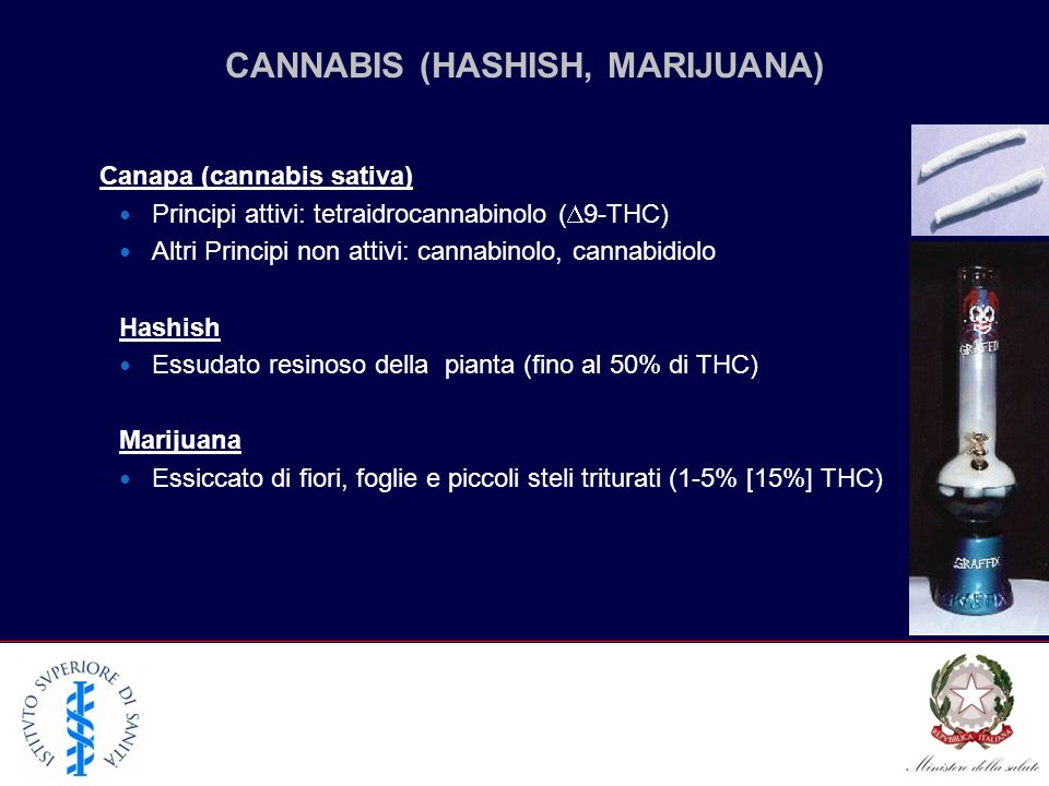CANNABIS (HASHISH, MARIJUANA)