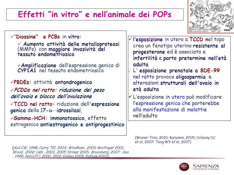 Effetti in vitro e nell'animale dei POPs