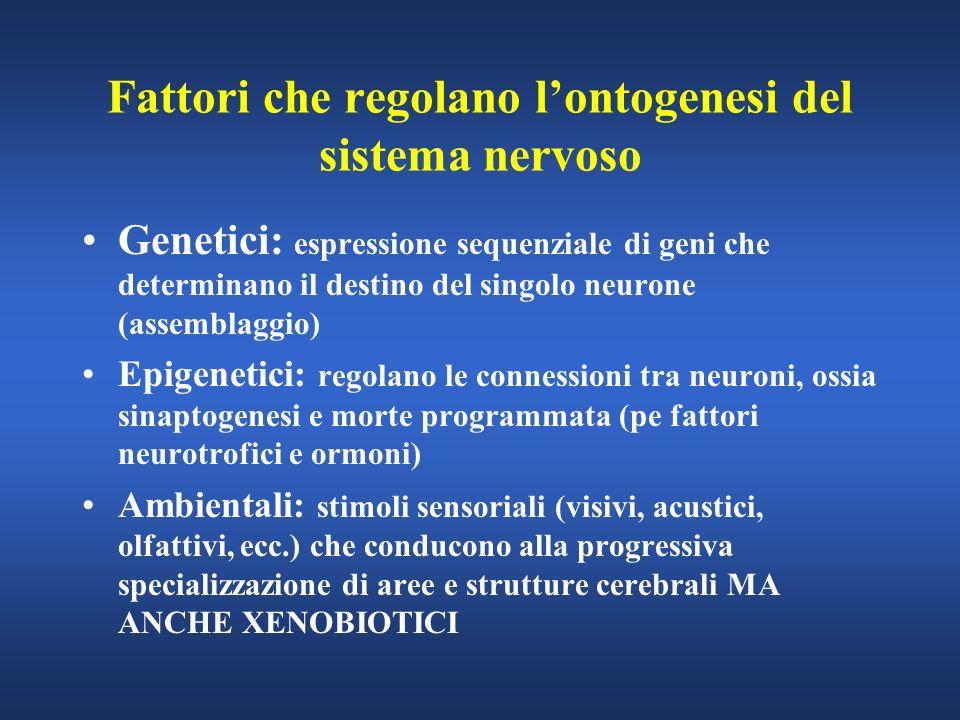Fattori che regolano l'ontogenesi del sistema nervoso