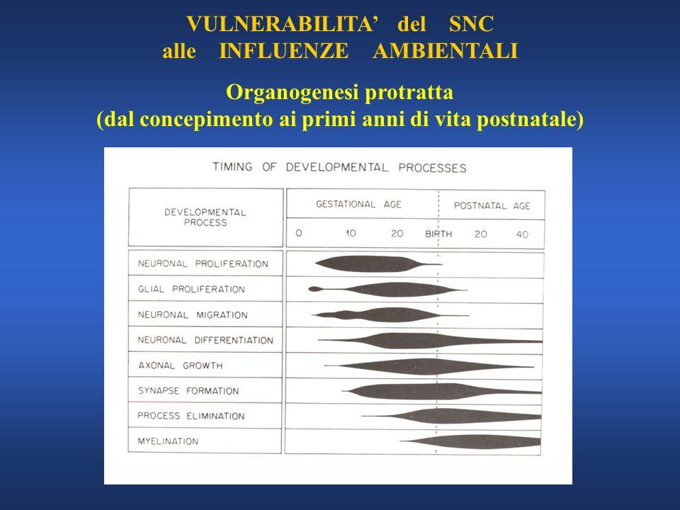 VULNERABILITA' del SNC alle INFLUENZE AMBIENTALI