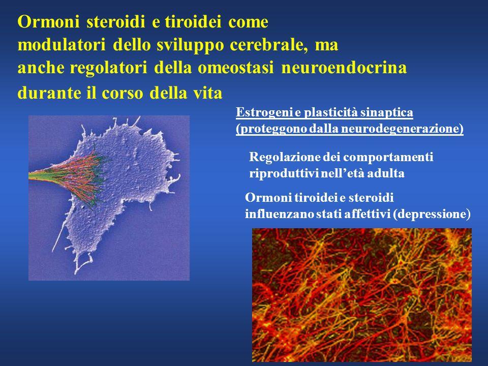 Ormoni steroidi e tiroidei come