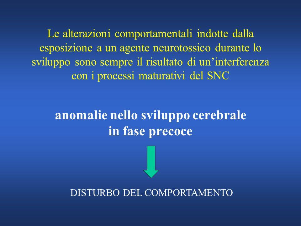 anomalie nello sviluppo cerebrale in fase precoce