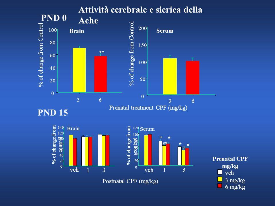 Attività cerebrale e sierica della Ache PND 0