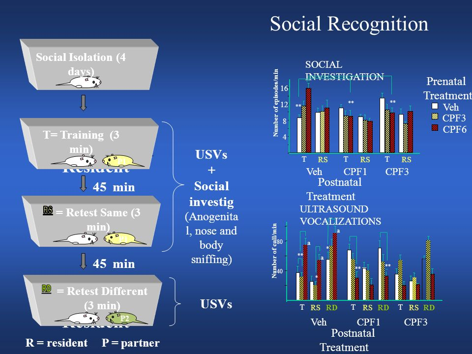 Social Isolation (4 days) = Retest Different (3 min)
