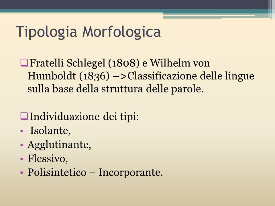 Tipologia Morfologica